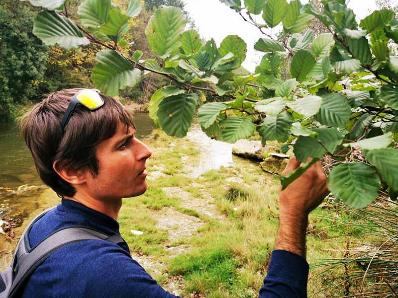 Cérès, pépinière de production de végétal local